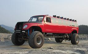 四驱沙漠冲浪车,旅游观光车可定制 (98万)
